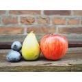 Саженцы плодовые (7)