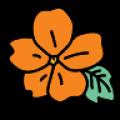 Семена сидератов (1)